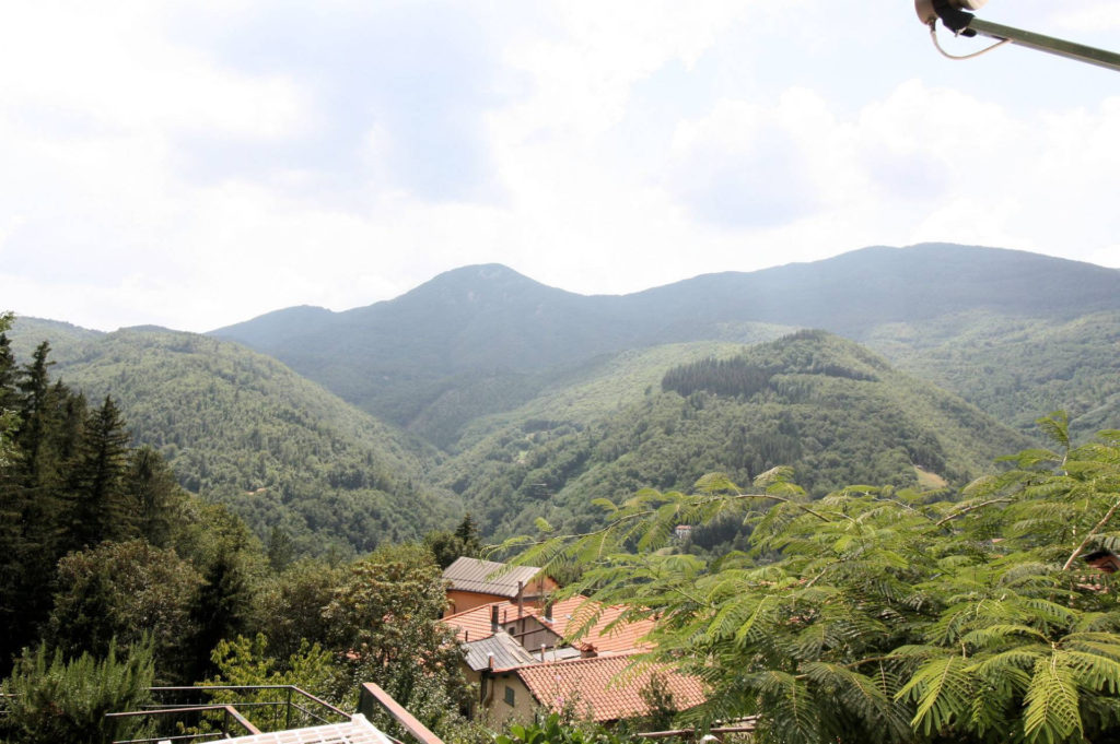 1029-Appartamento al piano primo con vista panoramica e piccolo giardino-Cutigliano-5 Agenzia Immobiliare ASIP