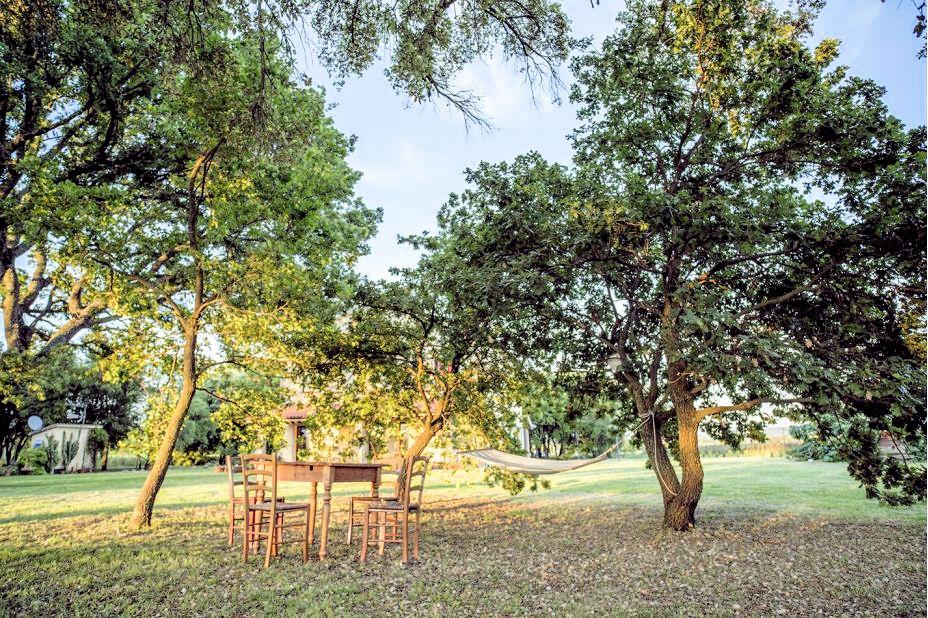 1031-Casale con dependance parco e piscina-Roccastrada-8 Agenzia Immobiliare ASIP