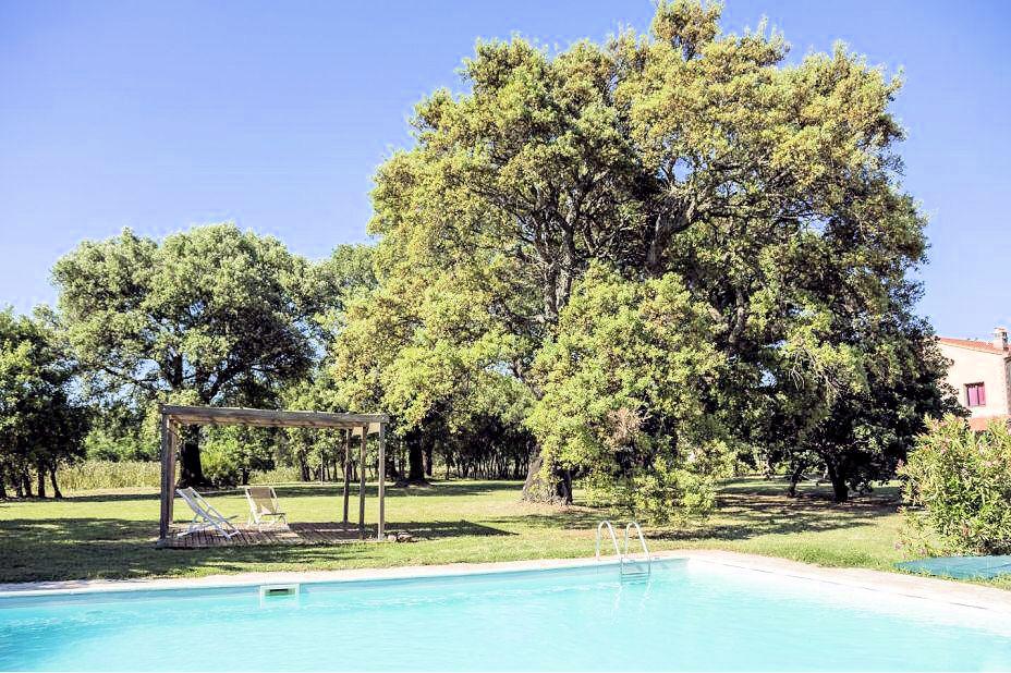 1031-Casale con dependance parco e piscina-Roccastrada-16 Agenzia Immobiliare ASIP