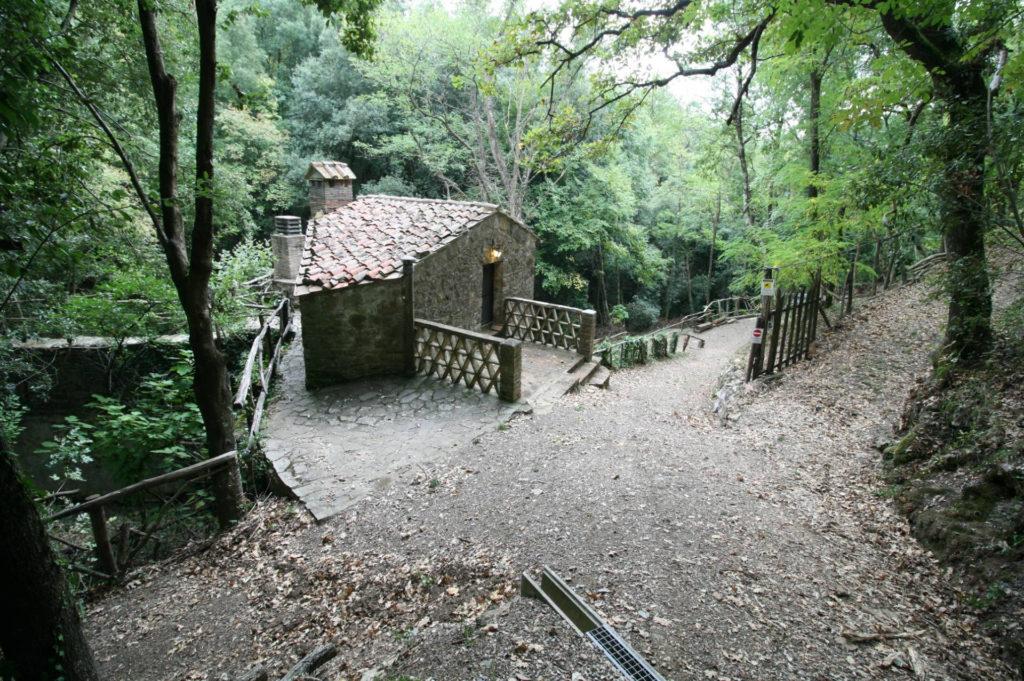 1073-Rustico Toscano-Massa Marittima-4 Agenzia Immobiliare ASIP