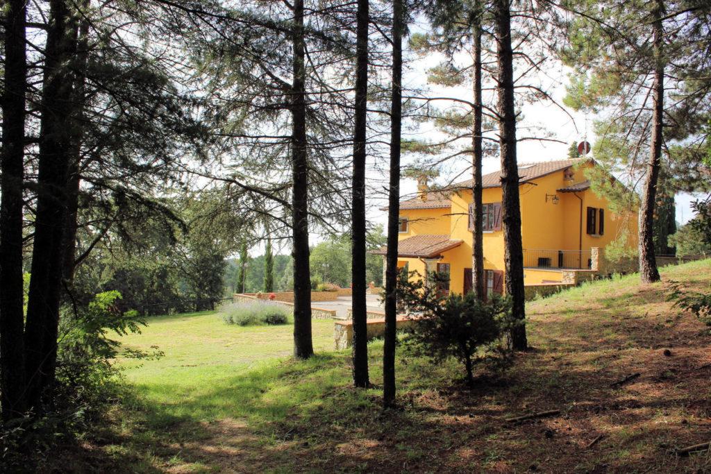 1095-Villa in collina con parco e piscina-Civitella in Val di Chiana-6 Agenzia Immobiliare ASIP