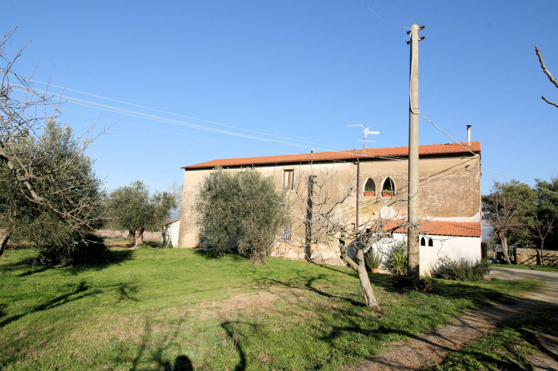 1132-Podere in Maremma-Scarlino-1 Agenzia Immobiliare ASIP
