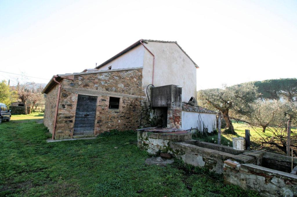 1132-Podere in Maremma-Scarlino-16 Agenzia Immobiliare ASIP