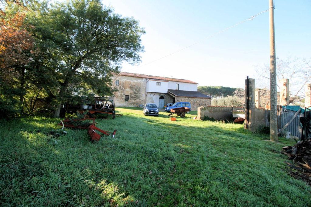 1132-Podere in Maremma-Scarlino-18 Agenzia Immobiliare ASIP