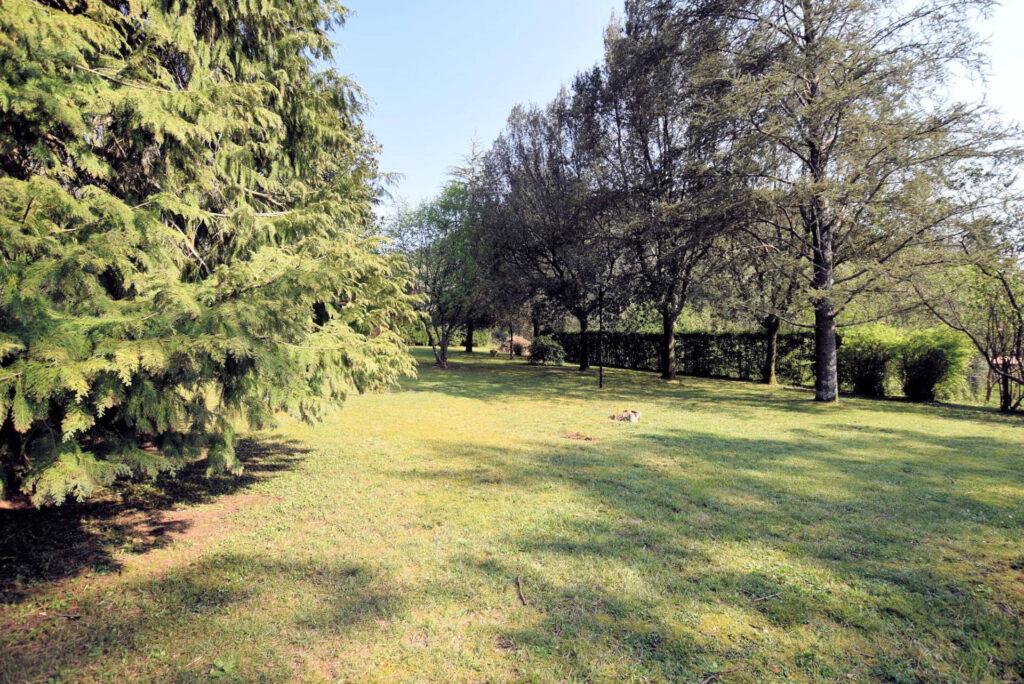 1153-Villa in collina con parco-Camaiore-4 Agenzia Immobiliare ASIP