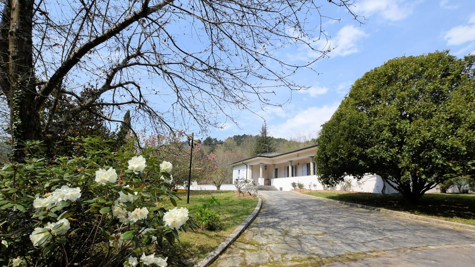 1153-Villa in collina con parco-Camaiore-1 Agenzia Immobiliare ASIP