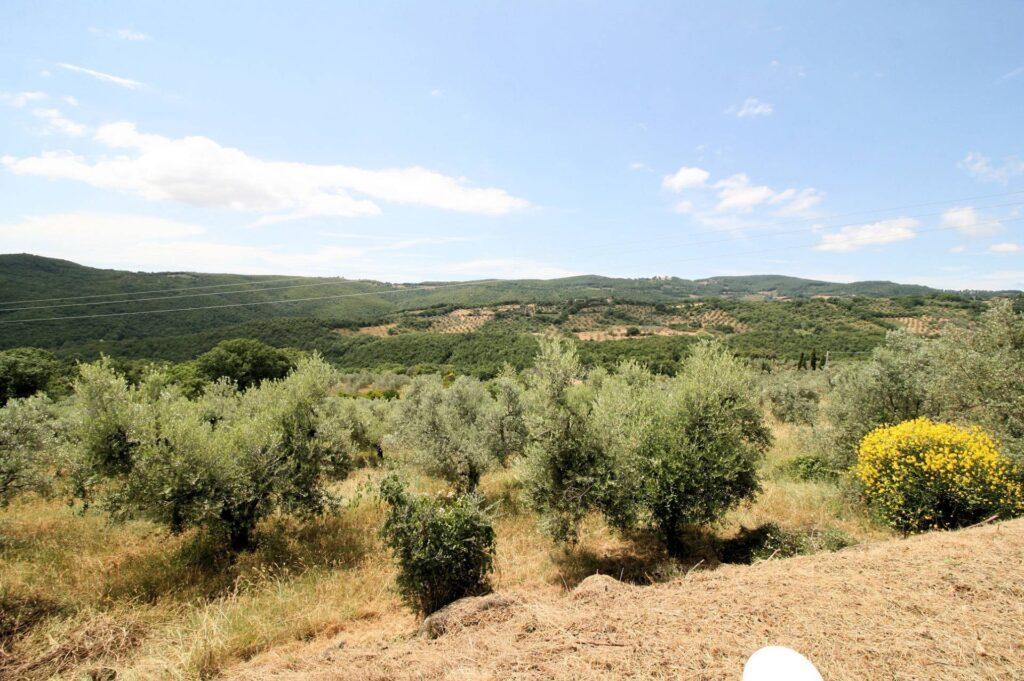 1157-Annesso agricolo con vista panoramica-Roccastrada-7 Agenzia Immobiliare ASIP