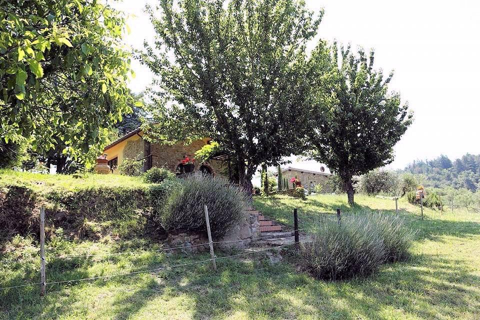 1211-Rustico con piscina e vista panoramica-Cavriglia-5 Agenzia Immobiliare ASIP