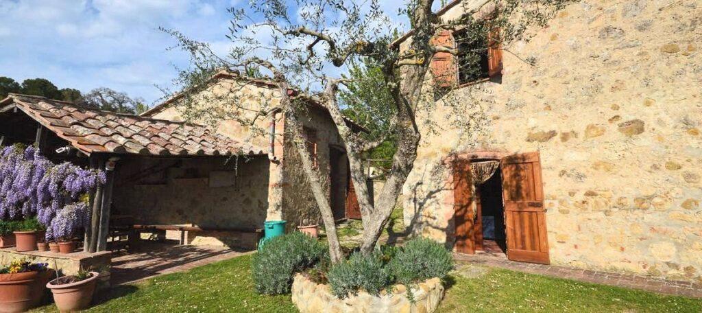 1241-Porzione di casolare con fienile oliveto e vigneto-Murlo-3 Agenzia Immobiliare ASIP