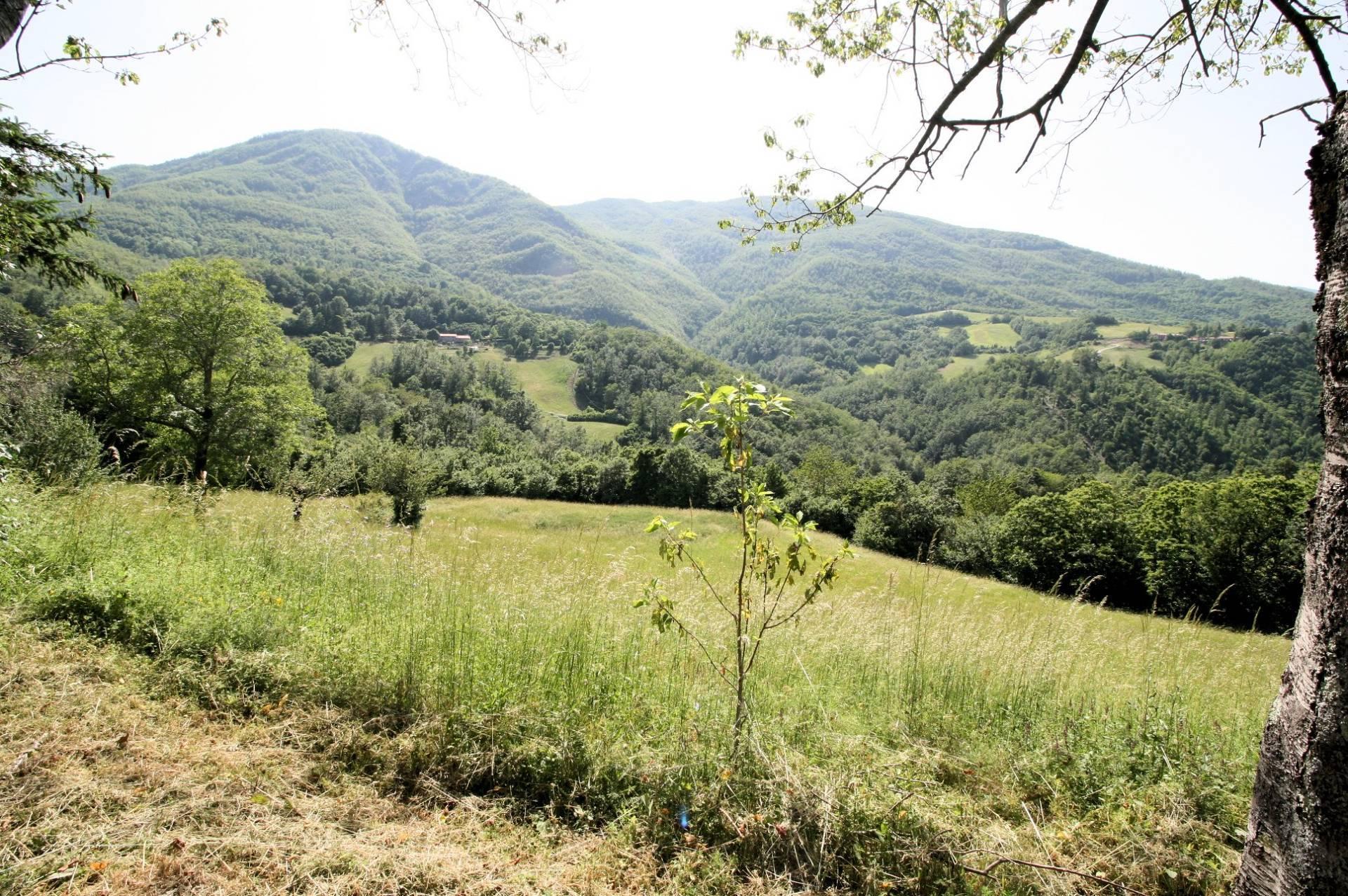 1266-Rustico di ampia superficie da ristrutturare con terreno-San Marcello Piteglio-2 Agenzia Immobiliare ASIP