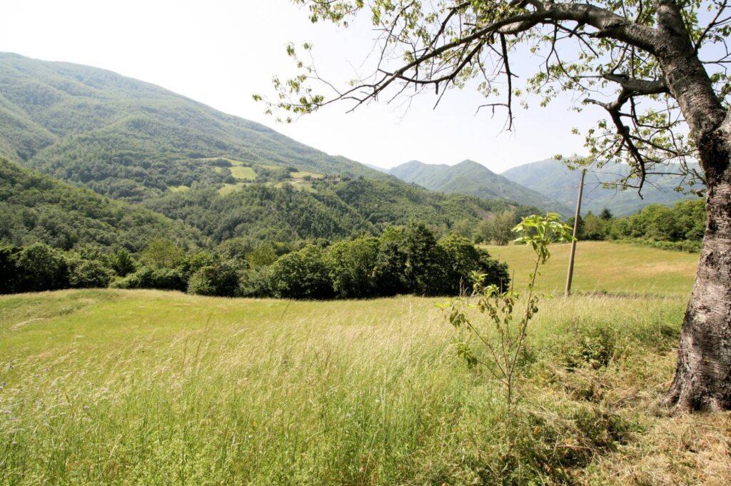 1266-Rustico di ampia superficie da ristrutturare con terreno-San Marcello Piteglio-4 Agenzia Immobiliare ASIP