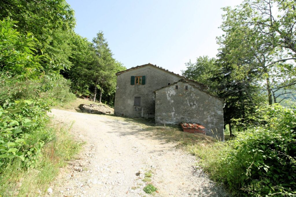 1266-Rustico di ampia superficie da ristrutturare con terreno-San Marcello Piteglio-8 Agenzia Immobiliare ASIP