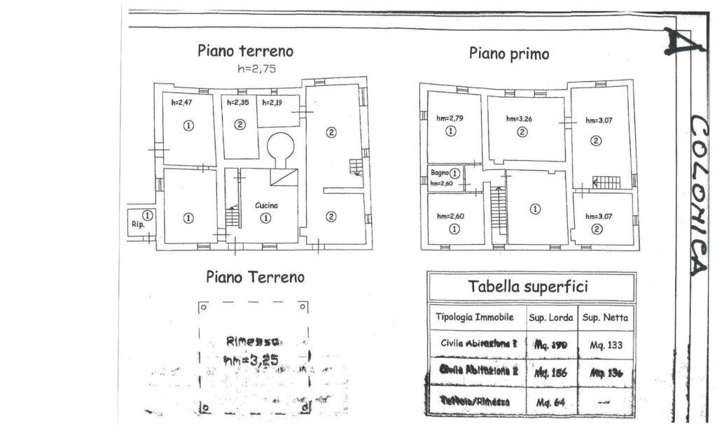 1269 Casa indipendente da ristrutturare con ampio uliveto Quarrata planimetria_8 Agenzia Immobiliare ASIP