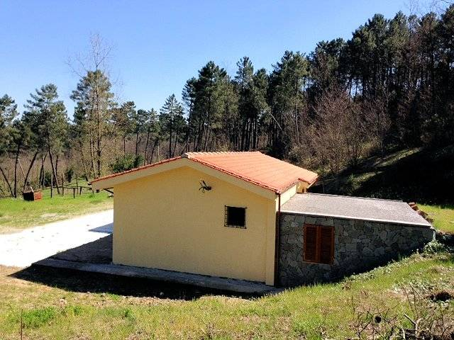 1272-Rustico con ampio terreno e vista panoramica-Pistoia-6 Agenzia Immobiliare ASIP